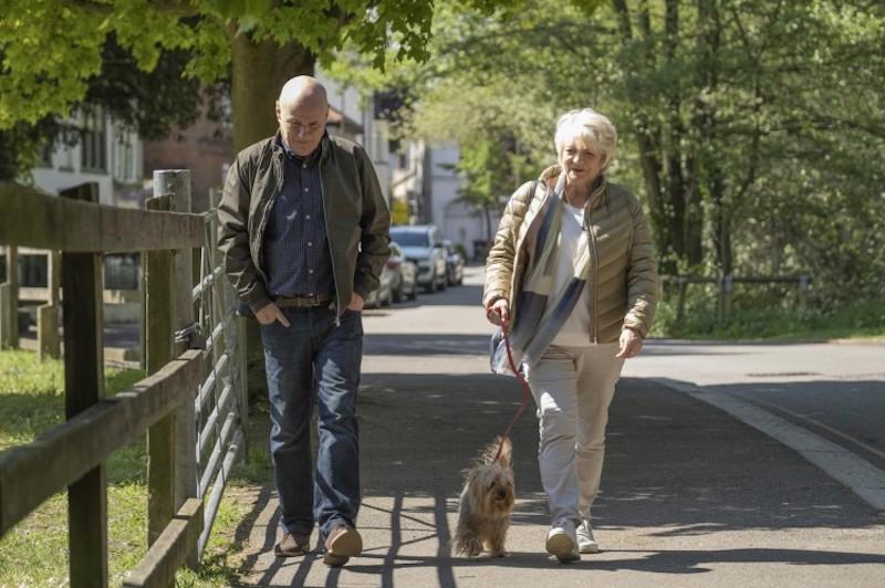 23 paseos (23 Walks, Paul Morrison, 2020)