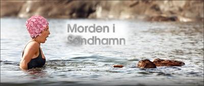The Sandhamn Murders 3