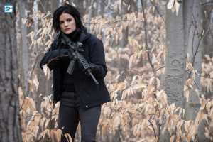 Blindspot 1x17
