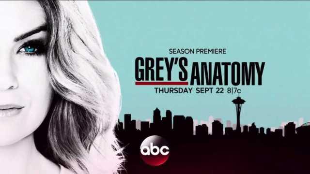Grey\'s Anatomy 13