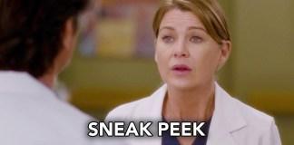 Grey's Anatomy 13x23