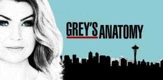 Grey's Anatomy 14 stagione