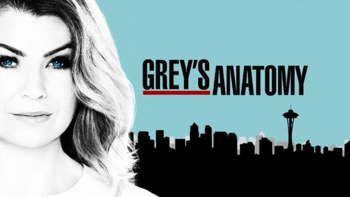 grey\'s anatomy 14 stagione