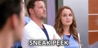 Grey's Anatomy 14x01