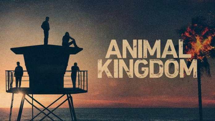 Animal Kingdom 6