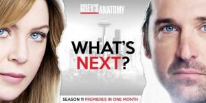 Grey's Anatomy 11.JPG