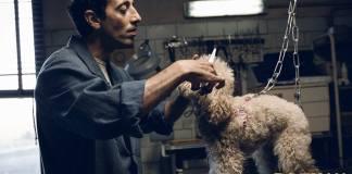 dogman Torino Film Festival
