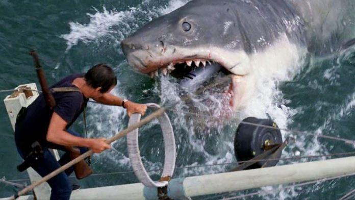 https://www.cinefilos.it/cinema-news/2012b/lo-squalo-video-dai-contenuti-speciali-del-blu-ray-31004