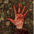 wrongturn5_thumb