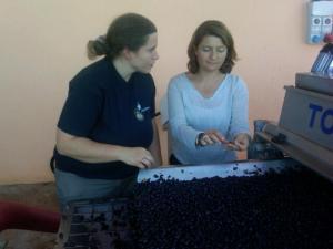 Valerie Lavigne e la nostra Barbara Magnani - Vendemmia 2010 - Donatella Cinelli Colombini