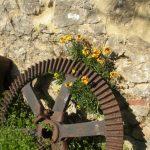 giardino delle barriques