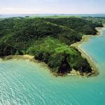 Spiagge della Nuova Zelanda