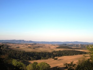 Montalcino visto dalla fattoria del Colle