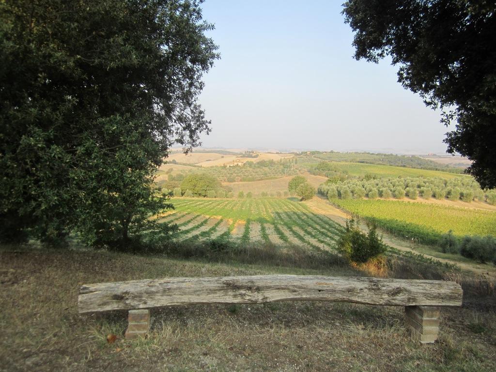Panorama da Colle Piccino
