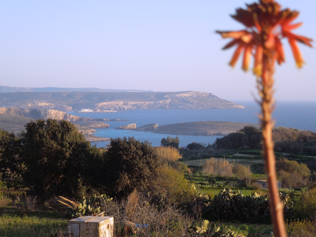 Malta - Gozo - Qala - panorama dal balcone di casa