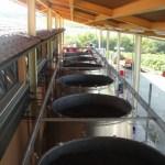 Tinaia-del-vento Montalcino winery