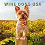 Wine dogs USA