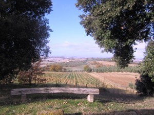 Panorama from Fattoria del Colle , Val d'Orcia