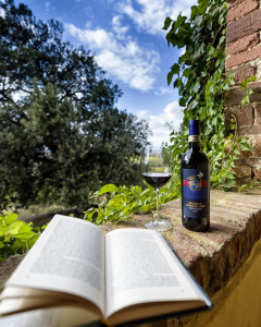 Bank-holiday-in-agriturismo-Fattoria-del-Colle