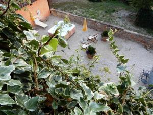 Solarium-Fattoria-del-Colle-agriturismo-in-Toscana