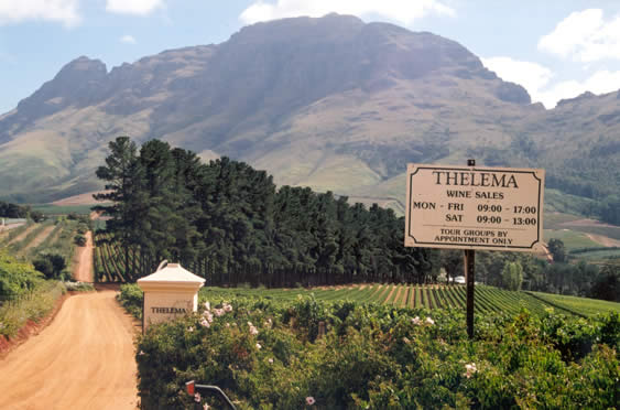Thelema, Sud Africa Chardonnay