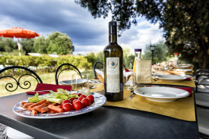 Villa-for-parties-lunch-by-the-pool-Toscana-Villa-Archi