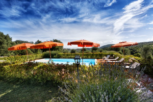 Villa-for-parties-Toscana-Archi-swimming-pool-Fattoria-del-Colle-agriturismo