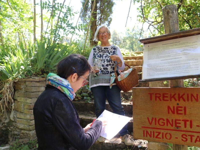 Trekking-into-the-vineyards-Donatella-Cinelli-Colombini