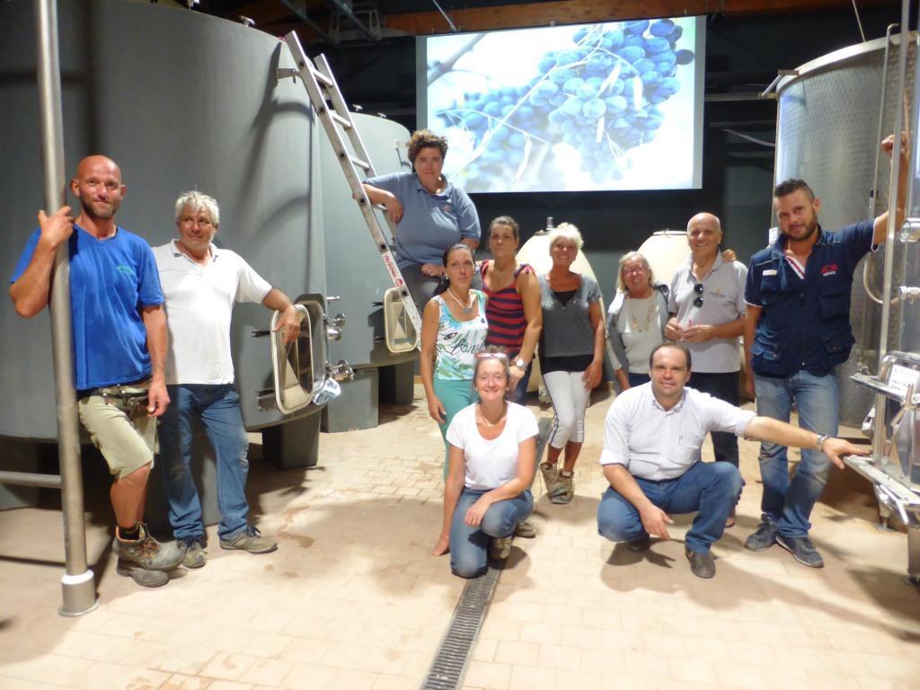 Vendemmia -experience-Montalcino-tinaia-Brunello-Casato-Prime-Donne