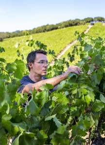 Chris Brockway di Broc Cellars- vini fatti con pochissimo intervento umano