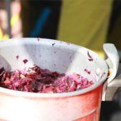 Festival_2017_cuisine2_04