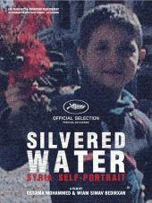 Passatempo #17_Silvered Water