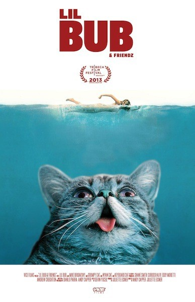 11 - Lil Bub and Friends