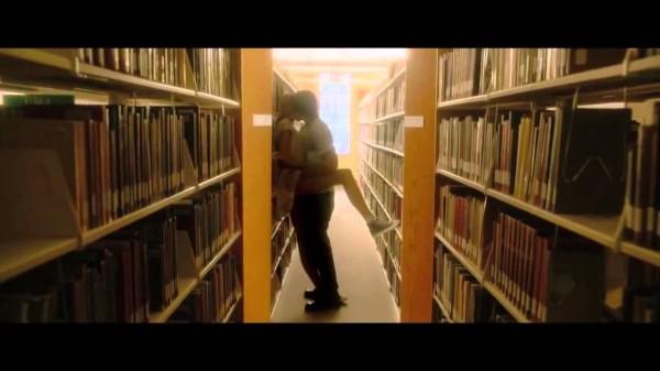 amor sem fim biblioteca