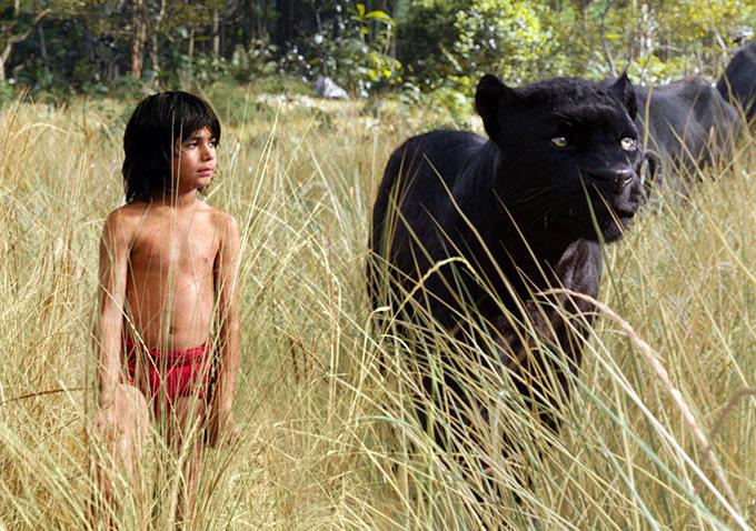 Trailer Mogli - O Menino Lobo