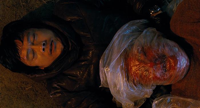 a-pele-que-habito3 Top 5: Filmes sobre comer o prato frio (ou sobre vingança)