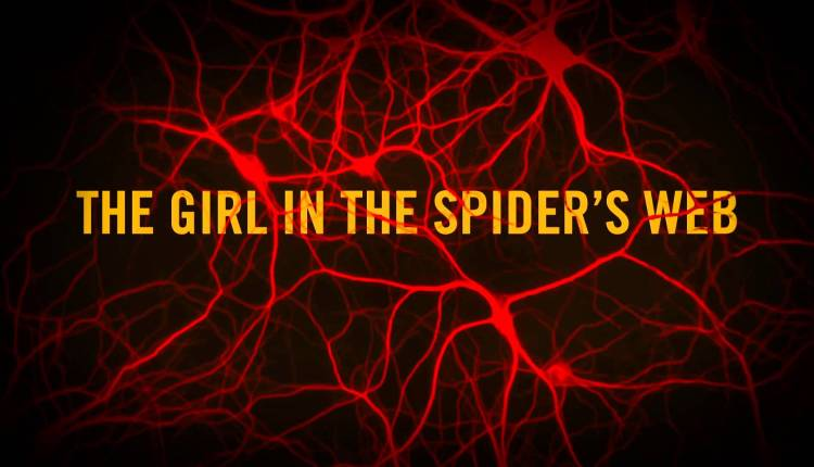 The Girl in Spiders Web