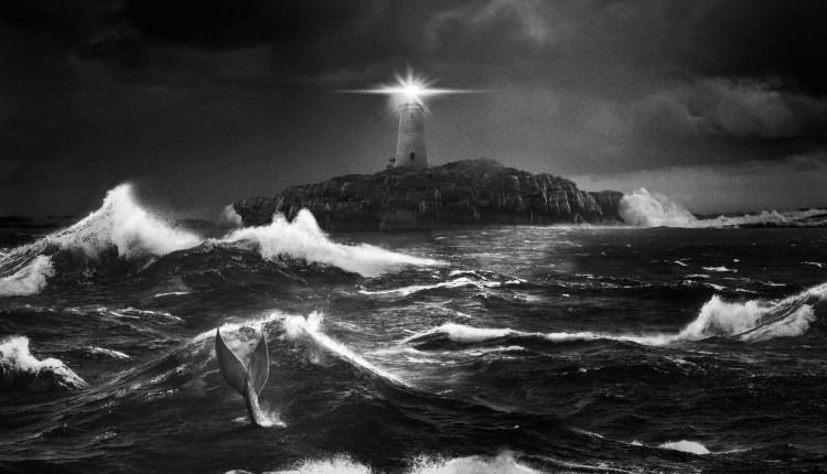 szmk_lighthouse_vilagitotorony_pattinson_dafofe2