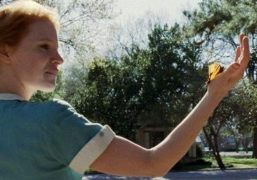 cinemanet | el arbol de la vida