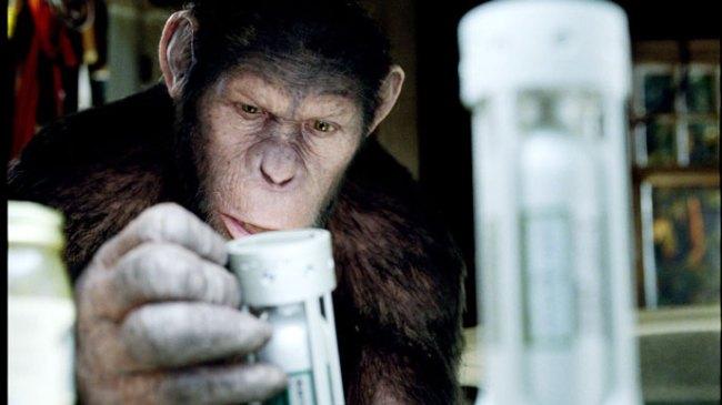 photo-la-planete-des-singes-les-origines-rise-of-the-planet-of-the-apes-2011-1