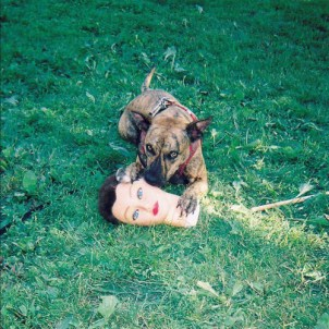 19 - Cody - Joyce Manor