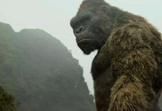 Image from Warner Bros. Pictures' KONG: SKULL ISLAND