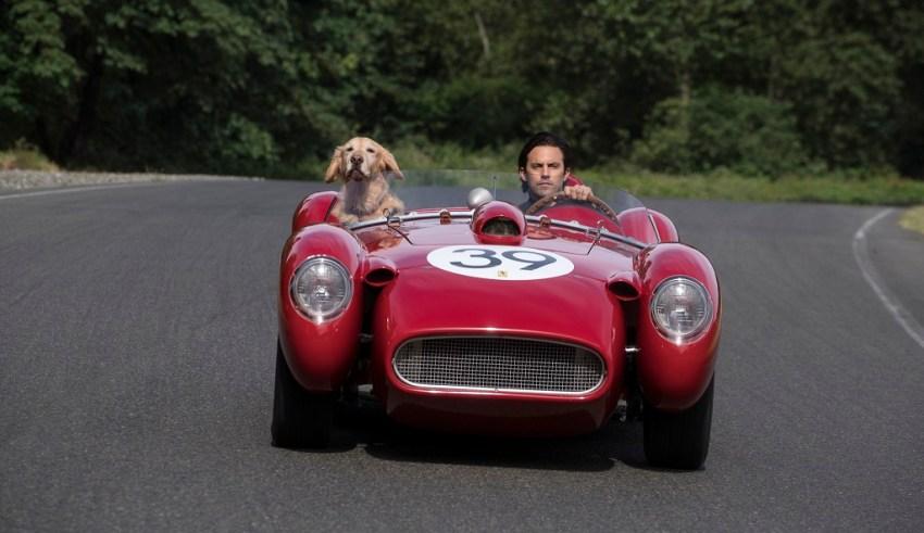 """""""Enzo"""" and Milo Ventimiglia star in 20th Century Fox's THE ART OF RACING IN THE RAIN"""