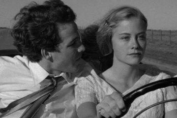 """A Última Sessão de Cinema"" (The Last Picture Show, 1971) - Distribuição: Columbia Pictures"