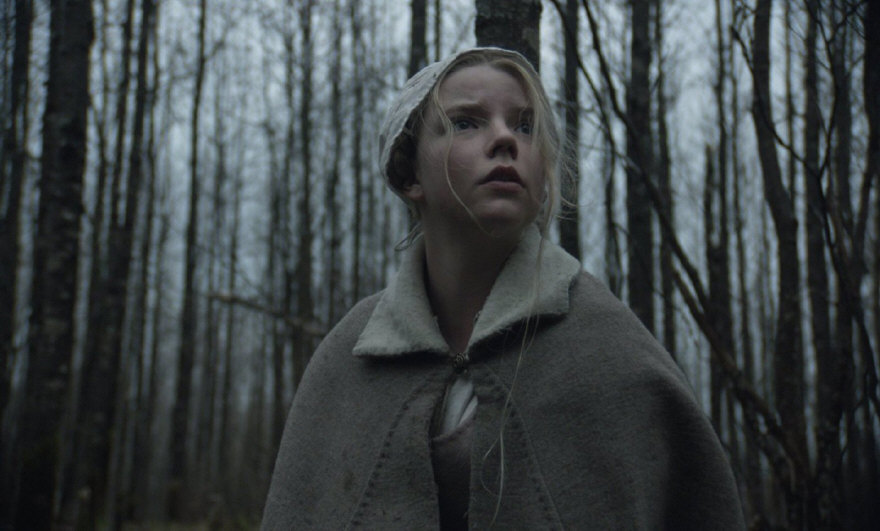 A Bruxa (The Witch, 2015)