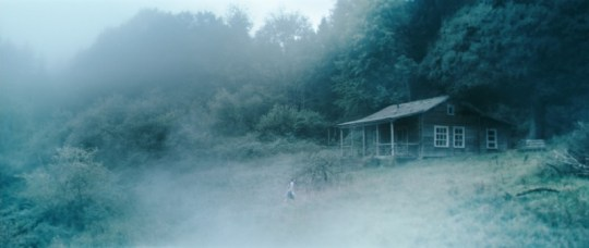 una-suggestiva-sequenza-del-film-antichrist-di-lars-von-trier-117229