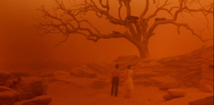 cat-people-1982-nastassja-kinski-malcolm-mcdowell-panthers-in-trees-dream