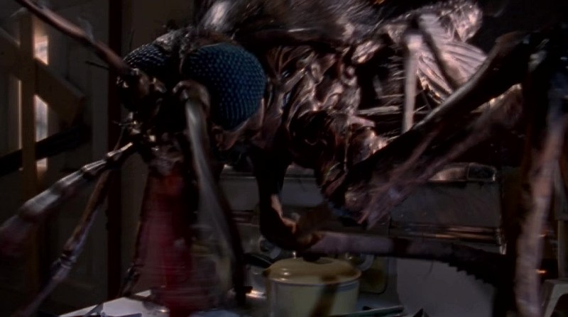 mosquito-bug