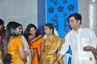 actress  Navya Nair Marriage Photos Wedding Photos (49)