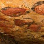 Un documental para la cueva de Altamira